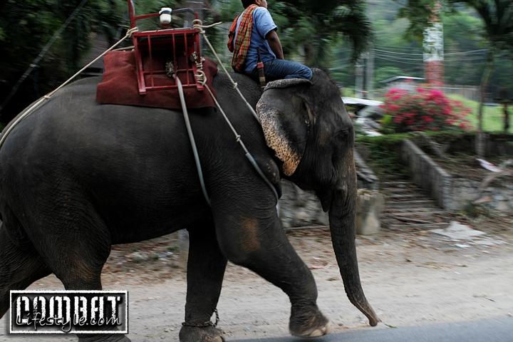 More Photos Around Thailand